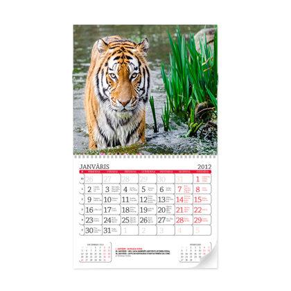 Noplēšamais sienas kalendārs M (300x490mm)