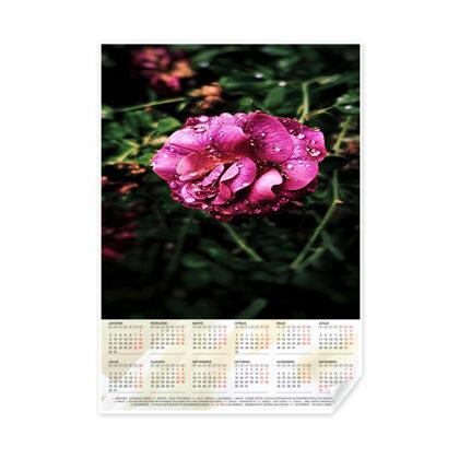 Календарь, постер A2